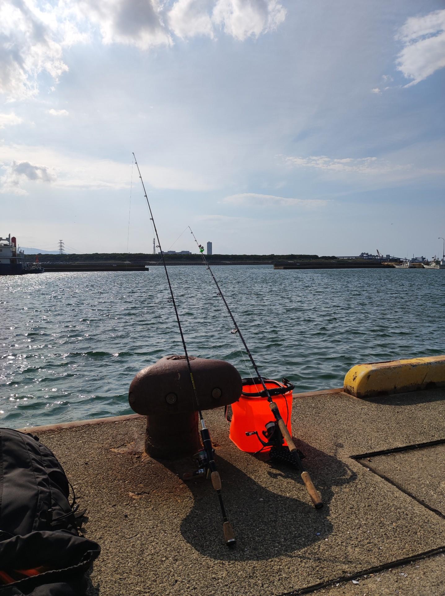 (´・ω・`)魚釣りきたぞおおおおおおおおおおお